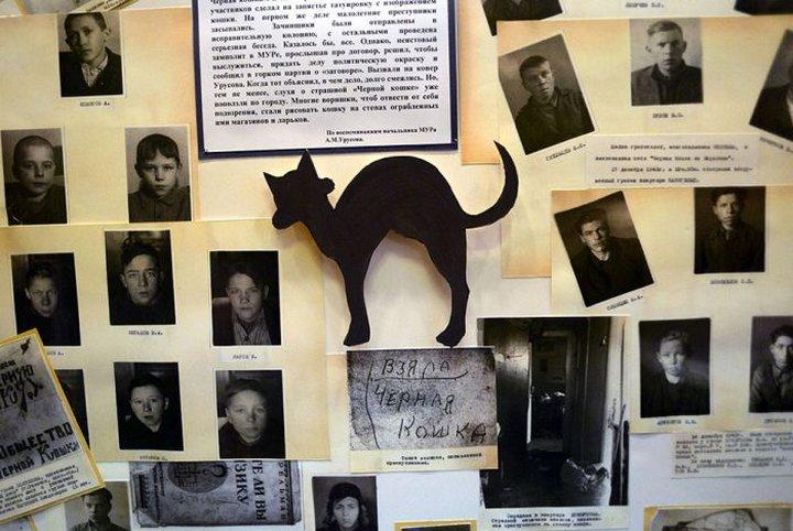 Вся правда о банде «Чёрная кошка»