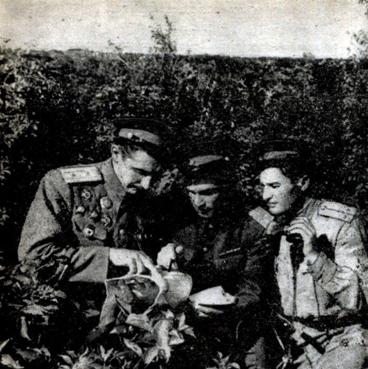 Как казаки втроем порубили немецкую автоколонну