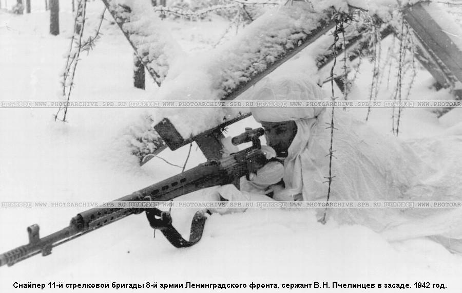 Снайпер Пчелинцев герой Ленинградского фронта