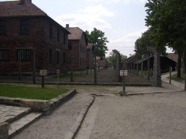 Идя сквозь тишину Освенцима