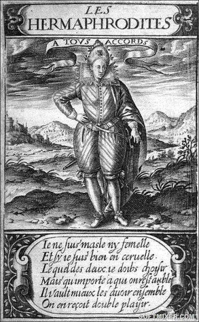 """Король-женщина"" - Генрих III Валуа"