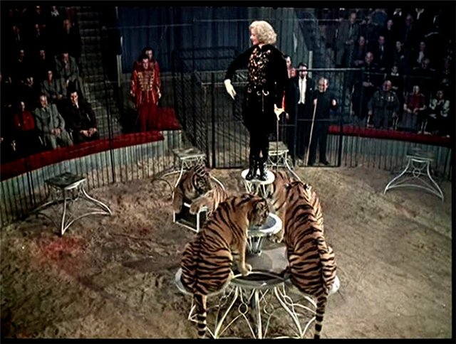 Как снимали фильм «Укротительница тигров»