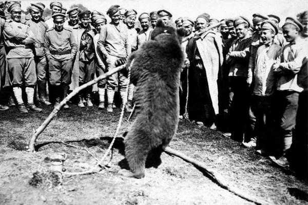 Пиар по-царски: медведь на службе в армии